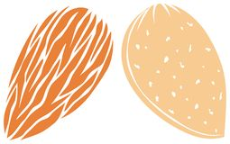 Free Almond Icons Vector Illustration Royalty Free Stock Photo - 164198985