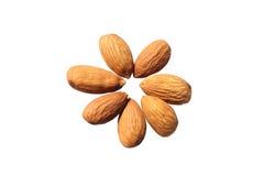 Almond isolate. Seven almond beans on a white background stock photos