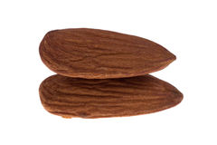 Almond on isolated Royalty Free Stock Photo