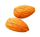 Almond isolated Stock Image