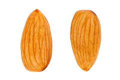Almond isolated. On white background Royalty Free Stock Image