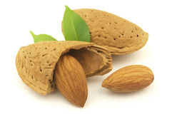 Almond and kernel. Sweet and tasty almond with leaves stock image