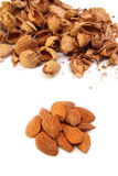 Almond kernels with  hulls Royalty Free Stock Photography