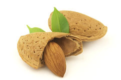 Almond with leaves Stock Photography