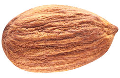 Almond with leaves isolated. Stock Photography