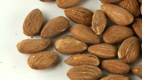 Almond Macro View. Nuts video stock footage