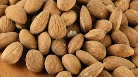 Almond Macro View. Nuts video stock video