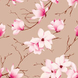 Almond magnolia flowers seamless vector pattern Stock Images