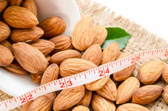 Almond and measuring meter. Stock Photos