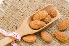 Almond and measuring meter. Stock Image