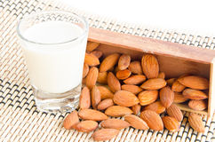 Almond milk in glass with almonds. Stock Image