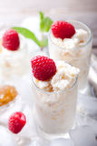 Almond milk granita with raspberries. Almond milk and orange zest granita with fresh raspberries in glasses on a vintage metal tray with ice cubes and mint Royalty Free Stock Photos