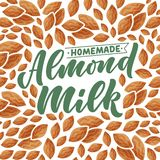 Almond milk lettering for banner, logo and packaging design. Organic nutrition healthy food. Phrase about dairy product. Vector. Illustration stock illustration