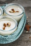 Almond Milk Yogurt. Vegetarian Cooking royalty free stock image