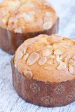 Almond muffin Stock Image