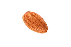 Almond Nut Stock Images