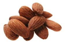 Almond nut stock photo