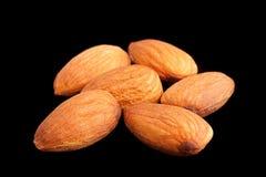 Almond nut closeup on black Stock Image