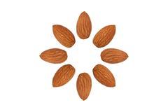 Almond nut fruit organic healthy snack vegan isolated Stock Photos