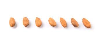 Almond Nut III Royalty Free Stock Photo