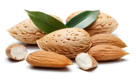 Almond nut isolated. Almonds nut isolated on a white background Stock Photography