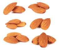 Almond nut Royalty Free Stock Photography