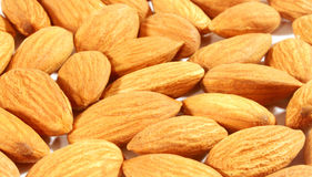 Almond nut Royalty Free Stock Images