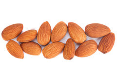 Almond nut seed Royalty Free Stock Photo