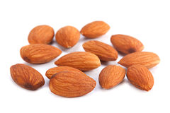 Almond nut seed Stock Images