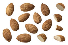 Almond nut set selection isolated on white background Royalty Free Stock Photography