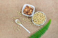 Almond nut and soy bean in white bowl and spoon with green plant on brown fabric. Background Royalty Free Stock Photos