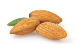 Almond nut on white Stock Images