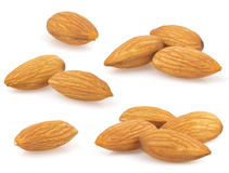 Almond nut on white Stock Photography