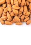 Almond Nut XI Stock Image