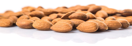 Almond Nut XII. Raw almond nut over white background Stock Photography