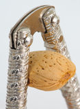 Almond in nutcracker. Almond being cracked by a nutcracker Royalty Free Stock Image