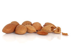 Free Almond Nuts Royalty Free Stock Image - 15169836