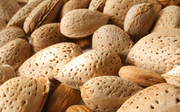 Almond nuts. In close up image Stock Images