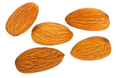 Almond nuts Royalty Free Stock Images