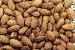 Almond nuts background. Close up macro photography of expanded heap of brown and gold shelled nuts royalty free stock photography