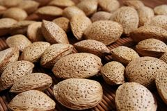 Almond nuts close-up Royalty Free Stock Photography