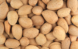 Almond nuts Royalty Free Stock Photos