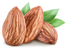 Almond nuts. Royalty Free Stock Images