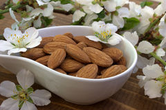 Almond. Nuts and flowers. Royalty Free Stock Photography