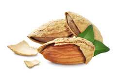 Almond nuts with leaves Royalty Free Stock Photo