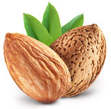 Almond nuts with leaves. Royalty Free Stock Photography