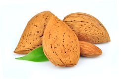 Almond nuts with leaves Royalty Free Stock Photos