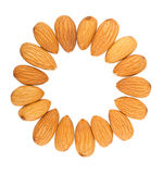 Almond nuts out on a circle Stock Photo