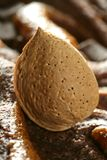 Almond nuts over chocolate, delicious golden food Royalty Free Stock Photo