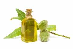 Almond oil Royalty Free Stock Photos